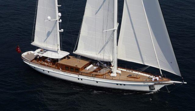 In Love Charter Yacht