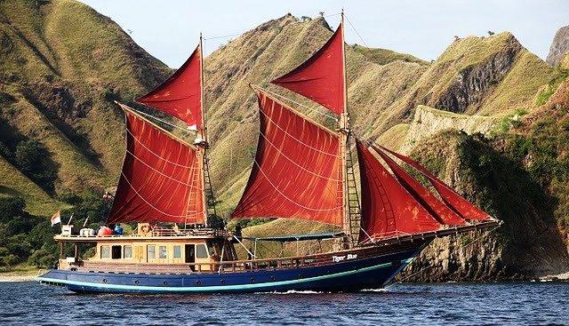 Tiger Blue Charter Yacht