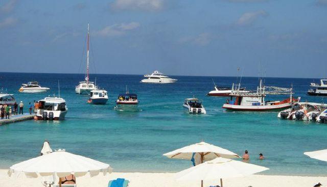 Amadeus Charter Yacht - 6