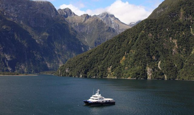 Discover New Zealand's Wild Side