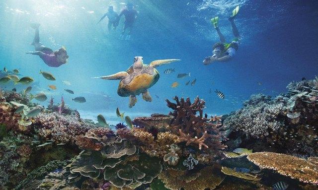 10 Top Islands in the Great Barrier Reef
