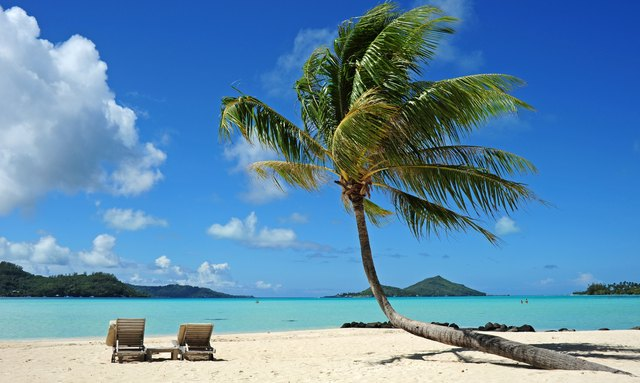 Beautiful deserted beach with palm tree and two sunloungers