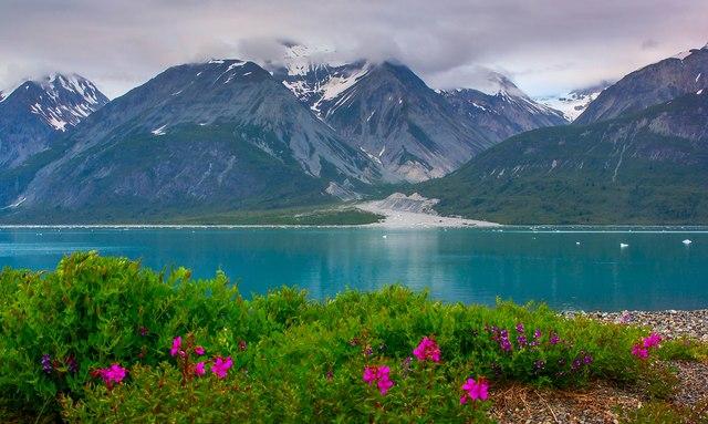 Alaska - Summer Charter Vacation