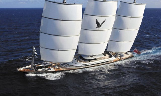 Reduced Summer Rates on Maltese Falcon