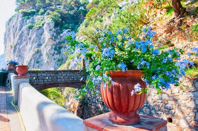 Sorrento to Capri
