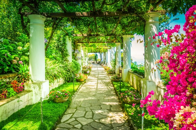 Experience the richness of Capri