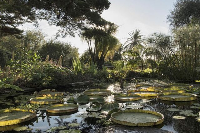 The Val Rahmeh Exotic Garden