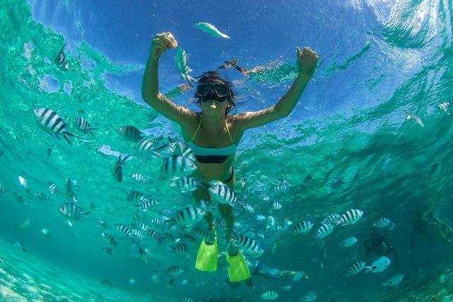 Private Reef Snorkeling