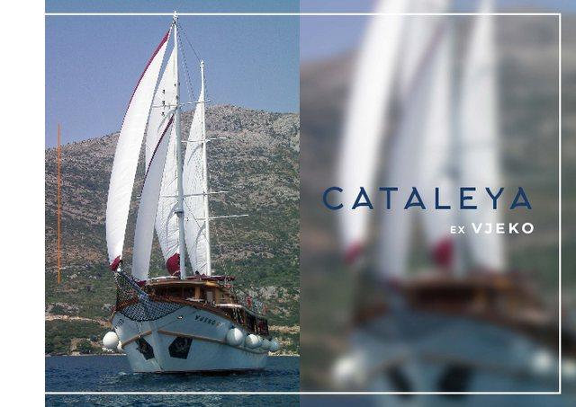 Download Cataleya yacht brochure(PDF)