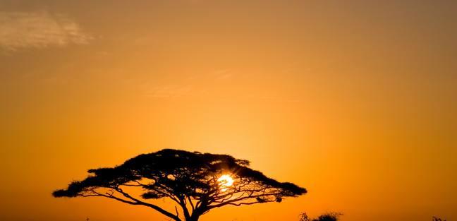 Africa photo 5