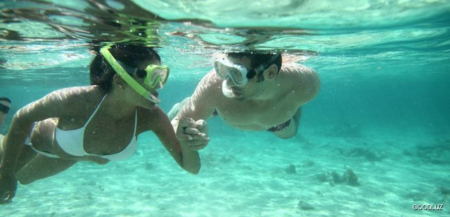 Couple in love diving together
