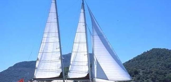 White Wings Charter Yacht