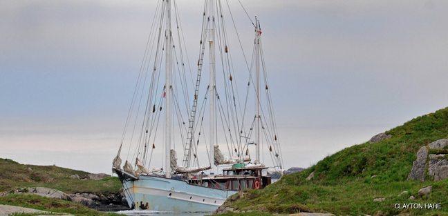 Rara Avis Charter Yacht - 2