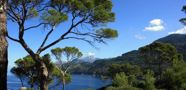 Mallorca photo 2