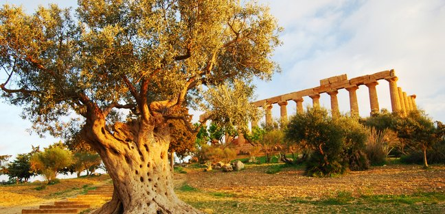 Sicily photo 5