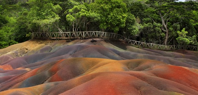 Colourful soil in front of the fenced forest