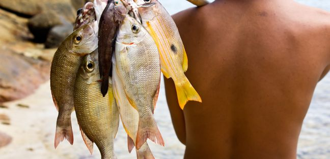 Andaman Islands photo 4
