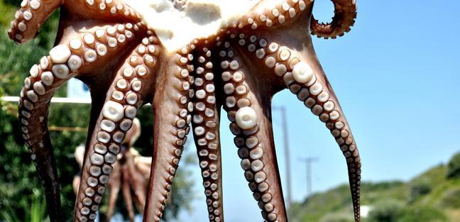 Rhodes Island photo 5
