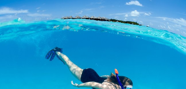 Have a Diving Adventure in the Maldives