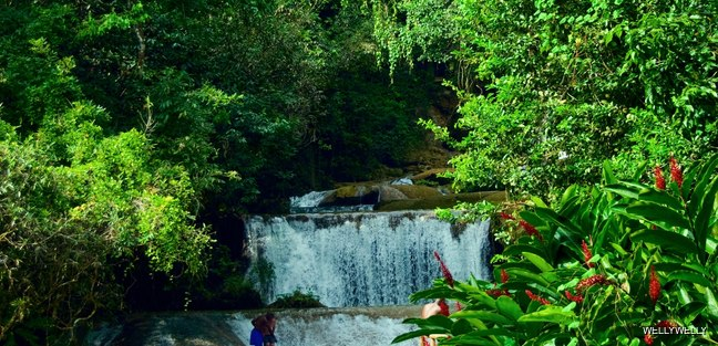 Waterfall in tropical Jamaican forest