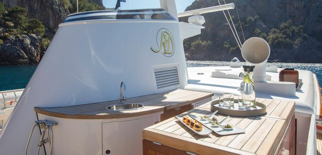 Heavenly Daze Charter Yacht - 8