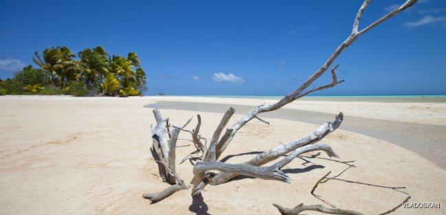 Tropical island panoramic view