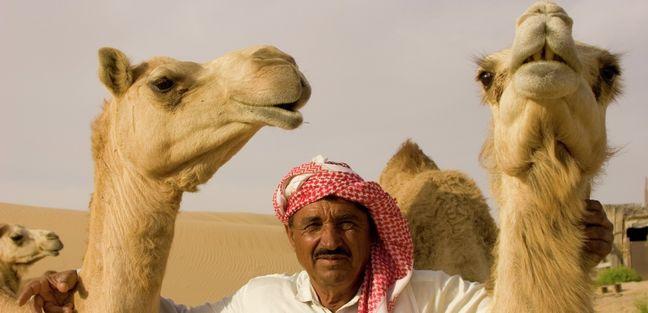 Arabian Gulf photo 5