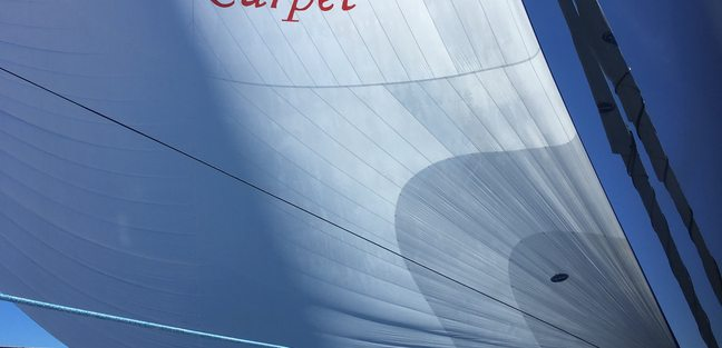 Red Carpet Charter Yacht - 7