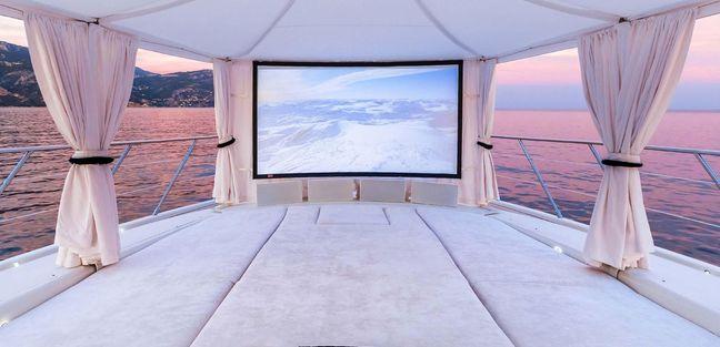 Lionchase Charter Yacht - 3