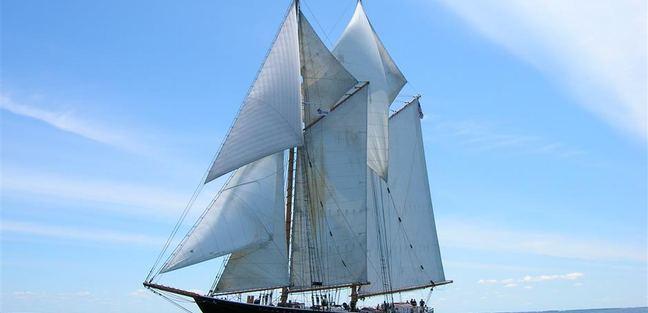 Highlander Sea Charter Yacht - 8