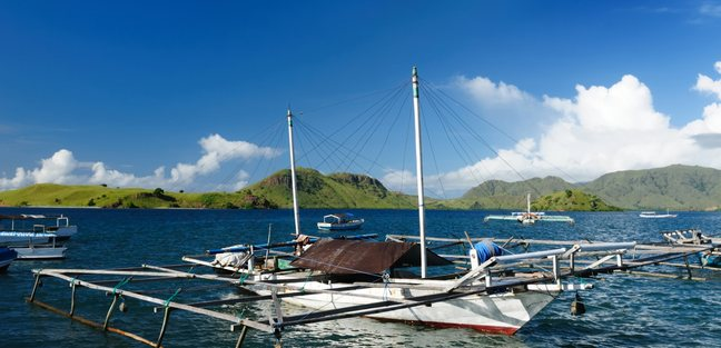 Komodo photo 5