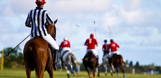 Enjoy the Polo in Barbados