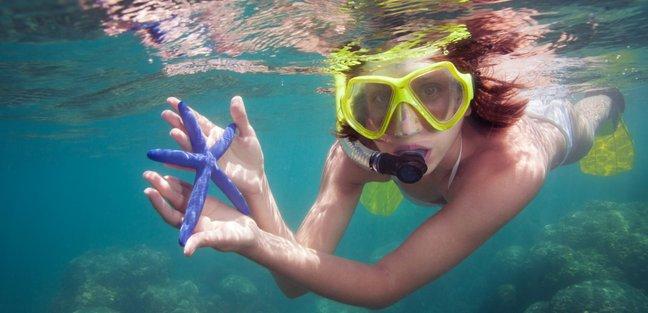 Meet the Marine Life in Thailand