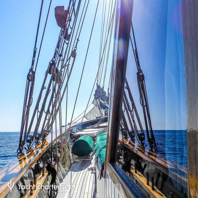 Arktos photo 16