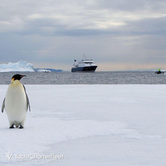 Hanse Explorer photo 44