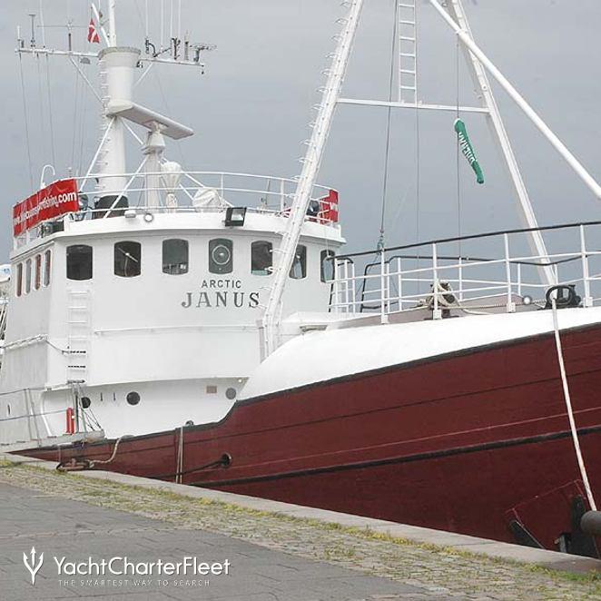 Arctic Janus photo 3
