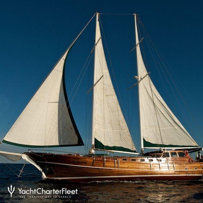 Deriya Deniz photo 19