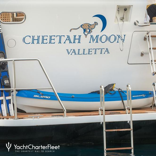 Cheetah Moon photo 41