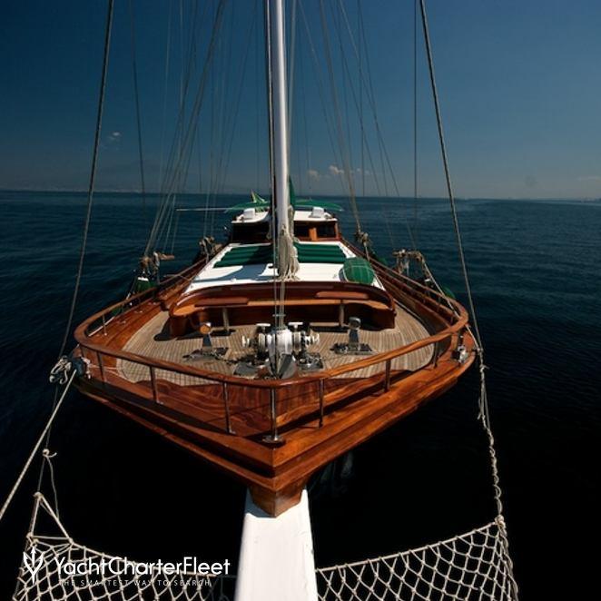 Deriya Deniz photo 7