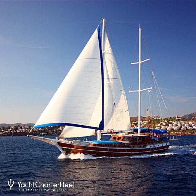 Blue Cruise photo 1