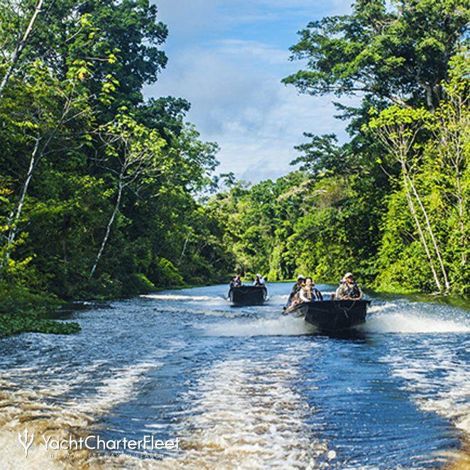 Aria Amazon photo 17