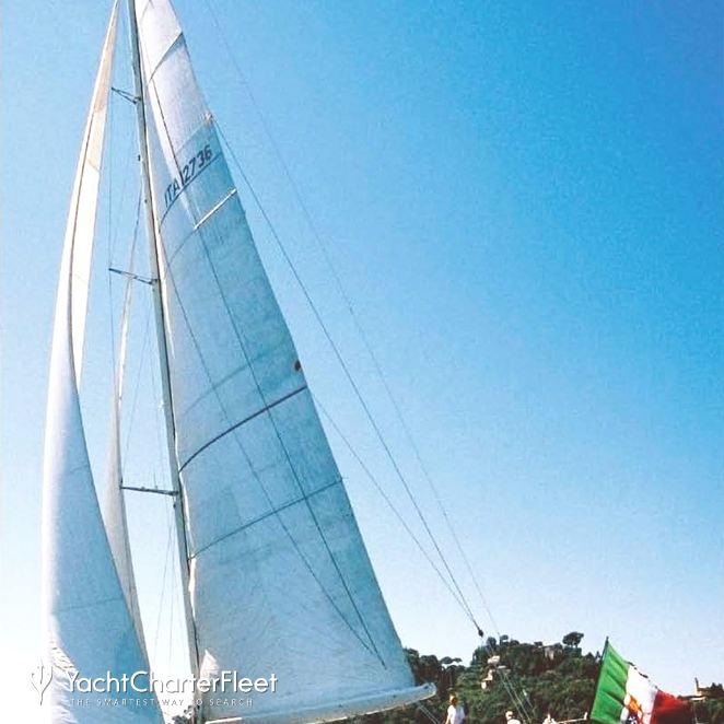 Whitefin photo 2