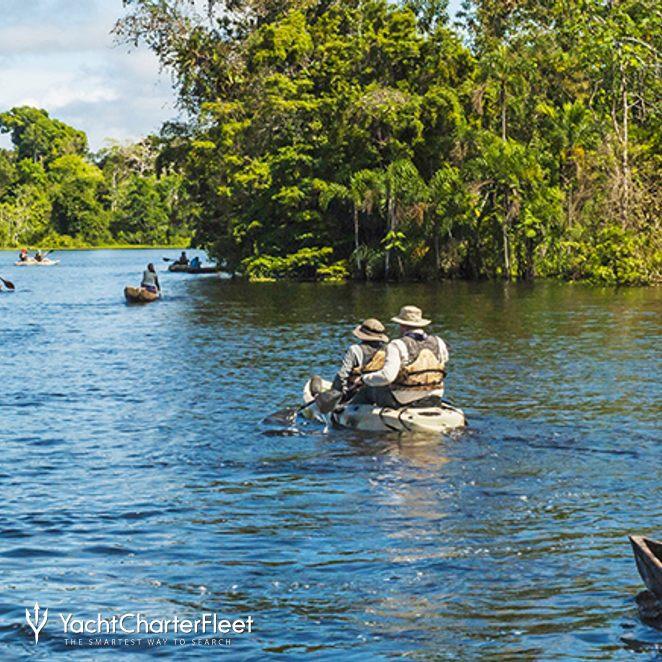 Aria Amazon photo 16