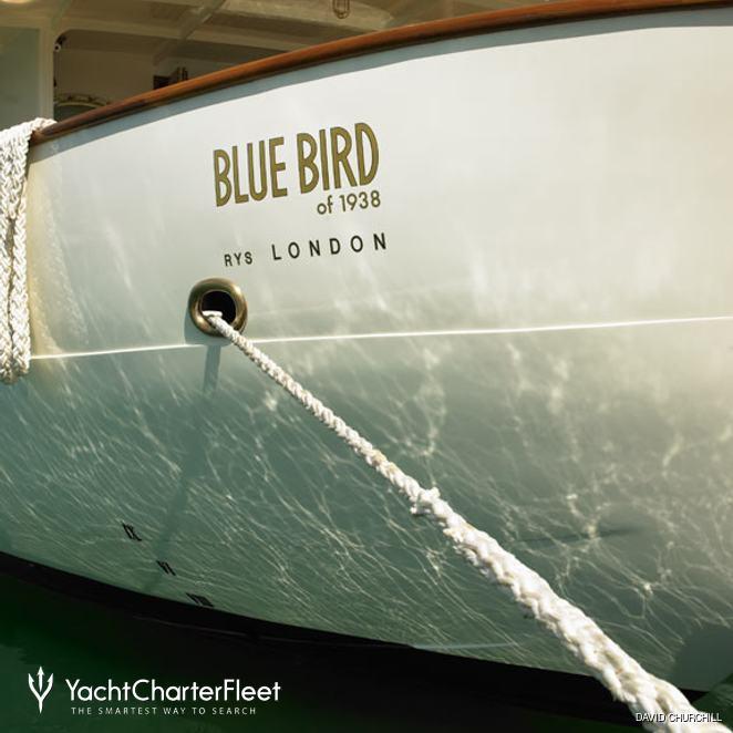 Blue Bird of 1938 photo 3