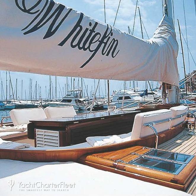Whitefin photo 5