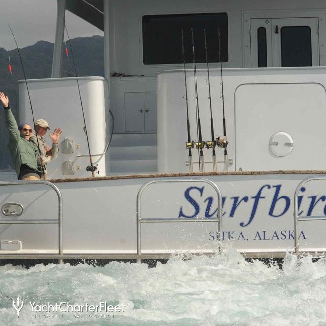 Surfbird photo 21