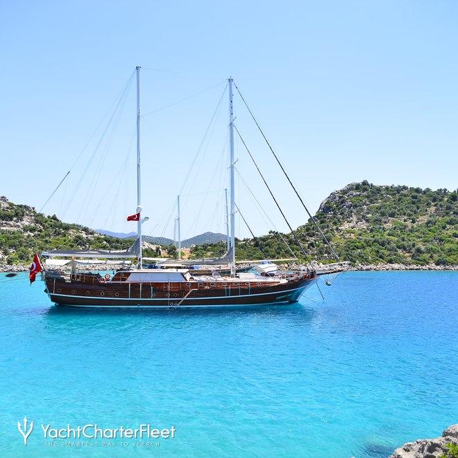 K Mehmet Bugra photo 5