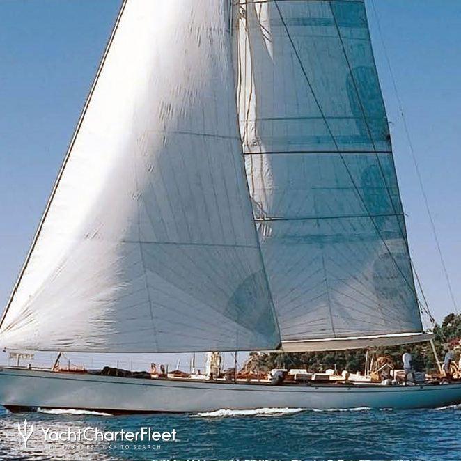 Whitefin photo 1