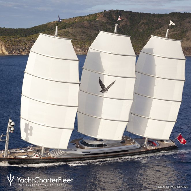 Maltese Falcon photo 59