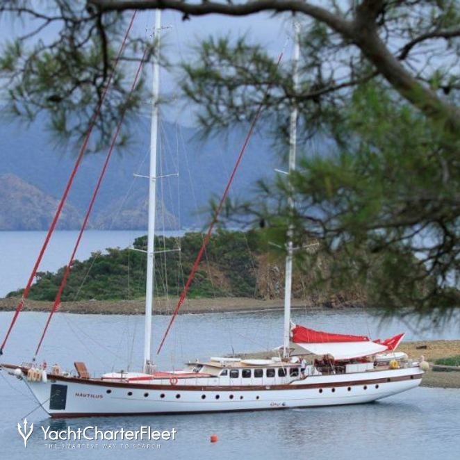 Nautilus photo 39